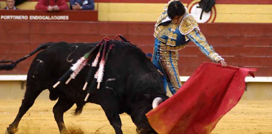 corrida de toros - torero español
